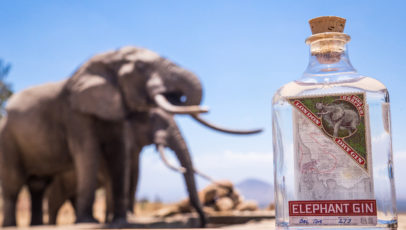 Running a company on sustainable values with Elephant Gin