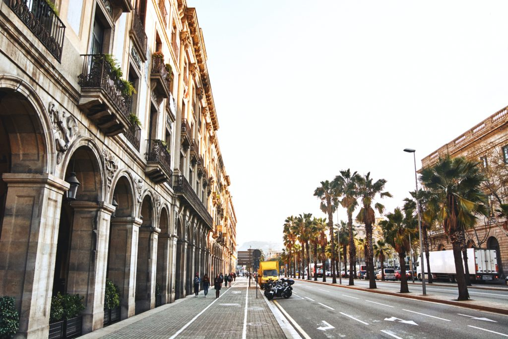 Barcelona street with palm trees