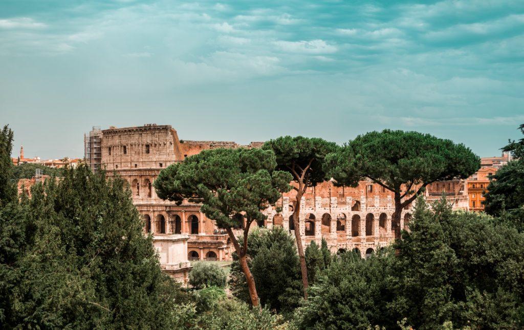 Rome colosseum trees