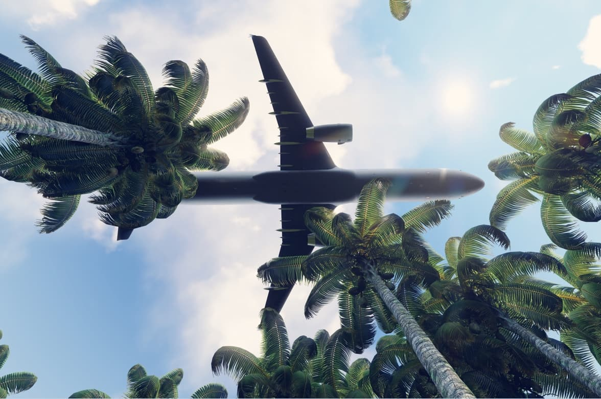 Plane flying over the jungle