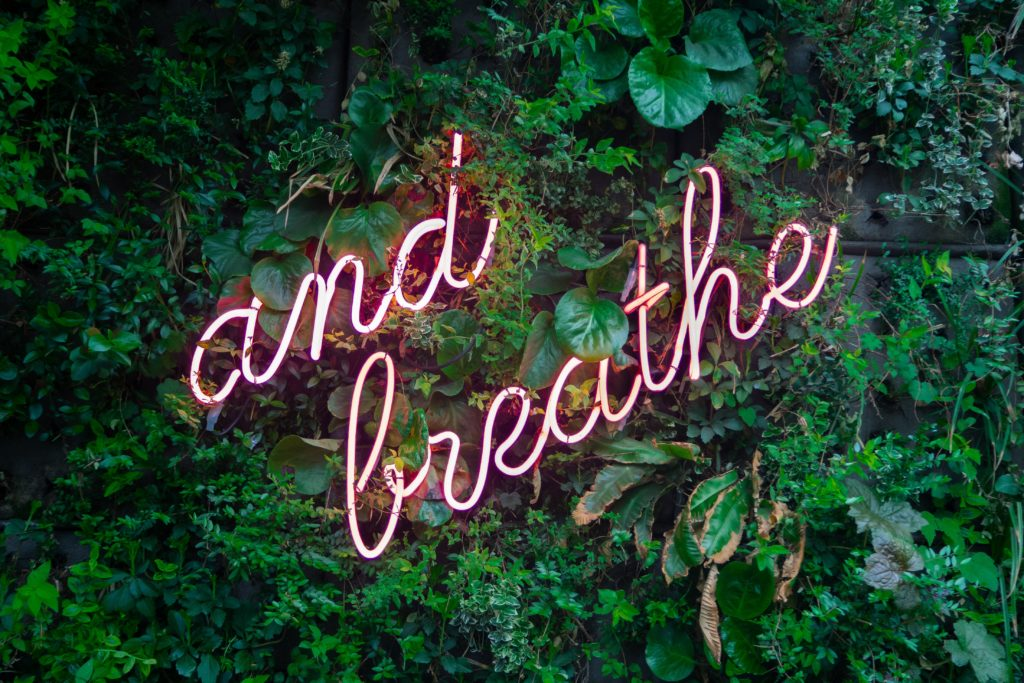Neon breathe sign on plants